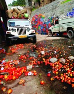 Spilled tomatoes lie alongside a wholesale vegetable market north of New Delhi, India. Trucking produce to market is a race against time and spillage results in lost food and income. ©AP Images