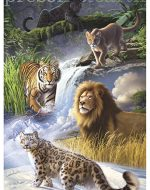 illustration of great cats—lions, tigers, jaguars, cougars, and snow leopards