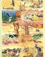 Earth Day 2006: International Year of Deserts and Desertification