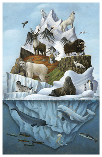 Preserve the Earth 2017: Biodiversity of the Polar Regions